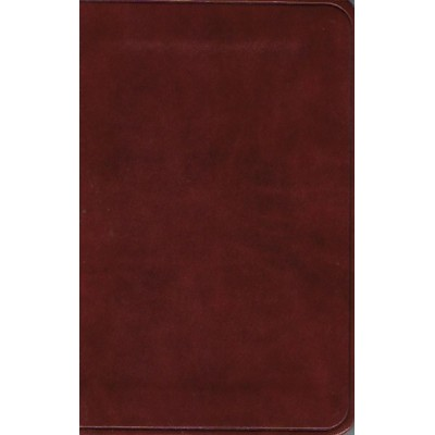ESV New Testament w Psalms & Proverbs Chestnut